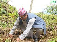 West Sikkim Celebrates Bhanu Jayanti